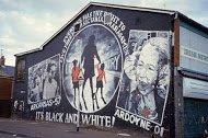 Fig 53 Black and White, Estoril Park, Ardoyne, Belfast, 2006